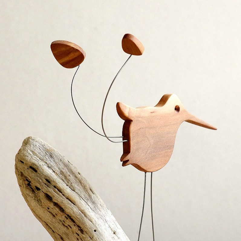 Wooden Spatuletail Hummingbird